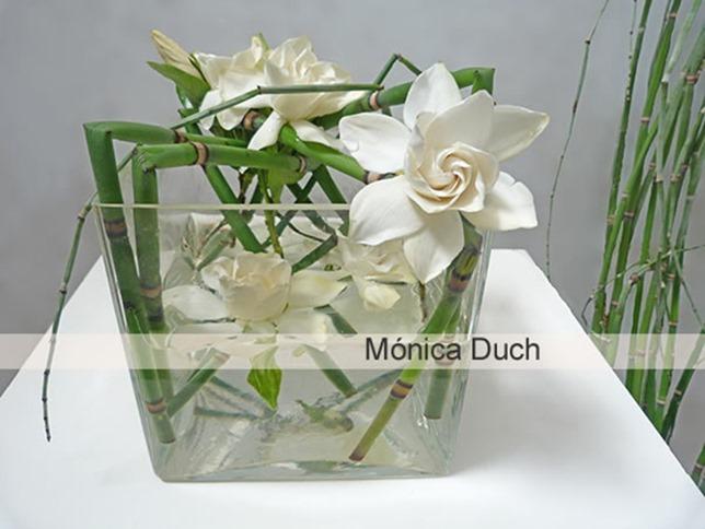 monica duch-Gardenia 1