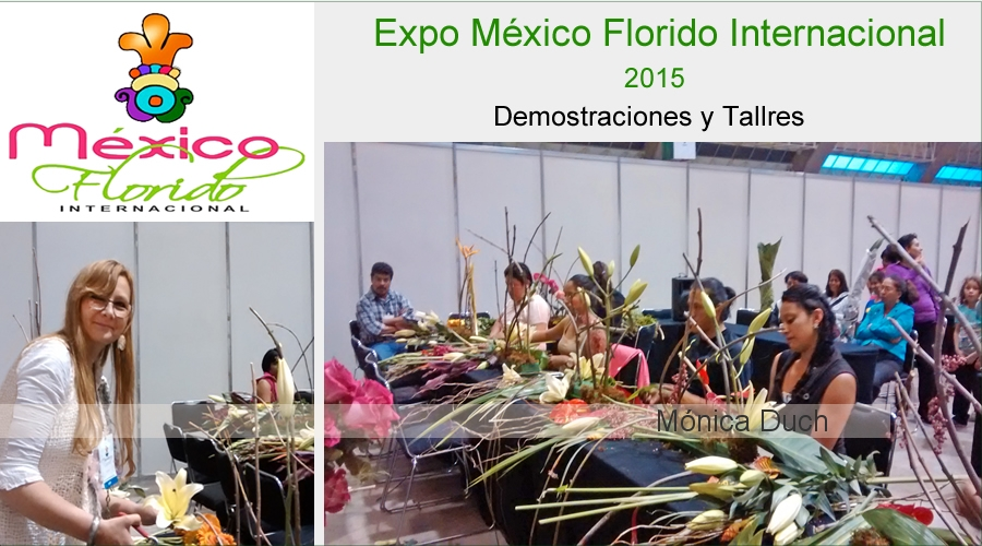 EXPO MEXICO FLORIDO INTERNACIONAL 2015